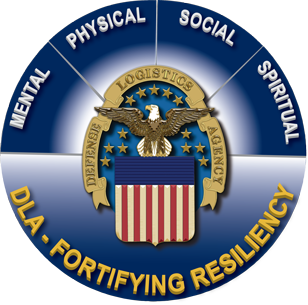 4 pillars of resiliency - Mental, Physical, Social, and Spiritual
